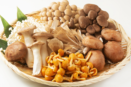 The Different Types Of Japanese Mushrooms Favy