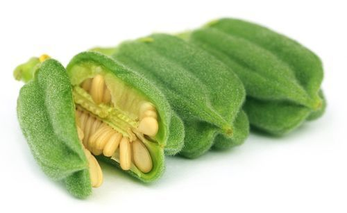Sesame_seeds_pods