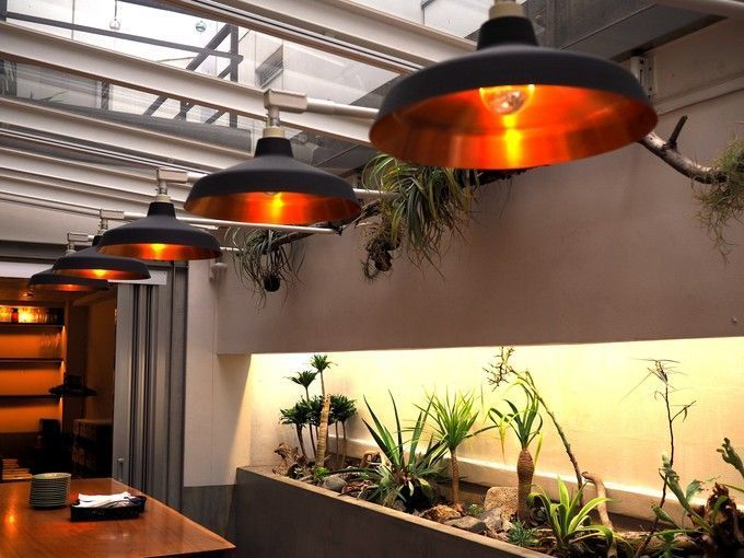 monsoon_cafe_interior_lights